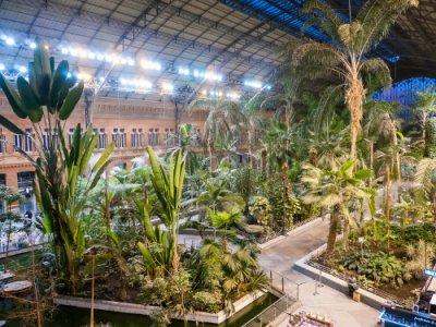 AVE Madrid Atocha jardín